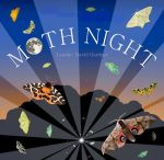 moth_night