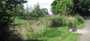 Biodiversity hedge