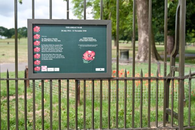 Brockwell Park Poppy Power (1/6)